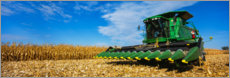 Canvas print  Harvester at harvest