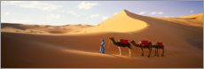 Canvas print  Camels in the desert