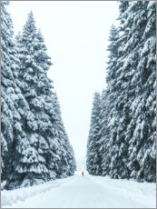 Premium poster Snowy forest