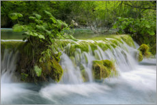 Premium poster  Waterfall in the fairy forest - Dieter Meyrl
