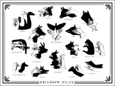 Wall sticker  Shadow Play - Wunderkammer Collection