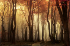 Acrylic print  Red fog - Martin Podt