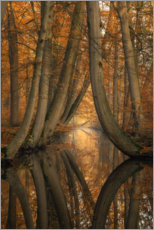 Acrylic print  The bent ones - Martin Podt