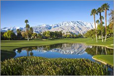 Gallery print  Golf course in Palm Springs - Walter Bibikow