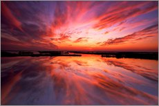 Gallery print  Red sunset - Jay O'Brien
