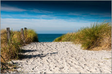 Gallery print  Baltic Sea - path to the beach - Reiner Würz