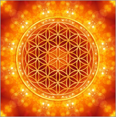 Wall sticker  Flower of life - golden age - Dolphins DreamDesign