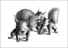 Gallery print  Three squirrel - Stefan Kahlhammer