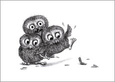 Stefan Kahlhammer - Help, three owls and a monster