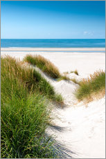 Gallery print  North sea dunes - Reiner Würz