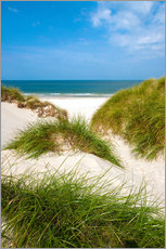Gallery print  Seascape with dunes and beach grass - Reiner Würz