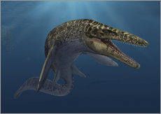 Wall sticker  Mosasaurus hoffmanni in prehistoric waters - Sergey Krasovskiy