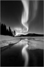 Wall sticker  Aurora Borealis over Sandvannet Lake in Troms County, Norway - Arild Heitmann