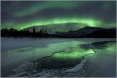 Wall sticker  Northern Lights, Norway - Arild Heitmann