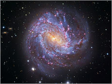 Gallery print  The Southern Pinwheel Galaxy - Robert Gendler