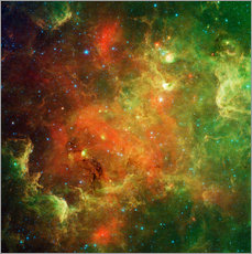 Gallery print  Clusters of young stars - Stocktrek Images
