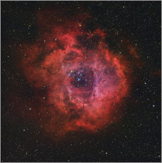 Wall sticker The Rosette Nebula