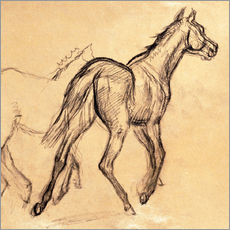 Wall sticker  horses - Edgar Degas