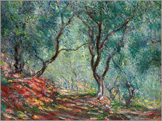Wall sticker  Olive Trees in the Moreno Garden - Claude Monet