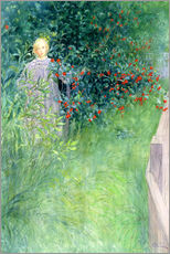 Gallery print  In the Hawthorn Hedge - Carl Larsson