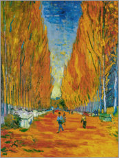 Premium poster L'Allee des Alyscamps, Arles
