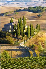 Gallery print  Belvedere House in San Quirico - Terry Eggers