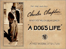 Wall Stickers  A Dogs Life, Charlie Chaplin poster Photo 1918