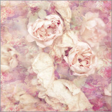 Gallery Print  Faded roses - INA FineArt