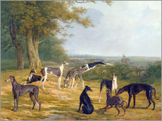 Gallery Print  Nine Greyhounds in a Landscape - Jacques Laurent Agasse