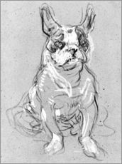 Wall sticker  'Bouboule', the bulldog of Madame Palmyre at La Souris - Henri de Toulouse-Lautrec