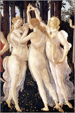 Gallery print  The Three Graces - Sandro Botticelli