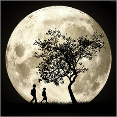 Wall sticker  Full Moon - Phil Perkins