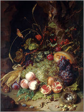 Gallery print  Still life with fruits and insects - Rachel Ruysch