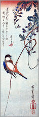 Gallery print  Swallow sitting on a branch of a wisteria - Utagawa Hiroshige