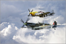 Gallery print  Flying Brothers - airpowerart