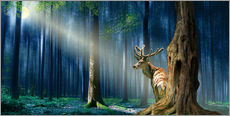 Gallery print  The Deer In The Mystical Forest - Monika Jüngling