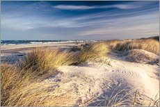 Gallery print  Sand dunes at the beach - Sascha Kilmer