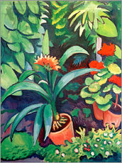 Wall sticker  Flowers in the Garden, Clivia and Pelargoniums - August Macke