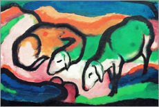 Gallery print  Sheep - Franz Marc