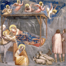 Wood print  The Nativity - Giotto di Bondone