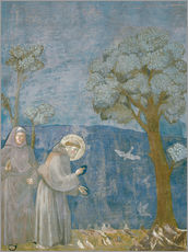 Wall sticker  St.Francis preache sto the birds - Giotto di Bondone
