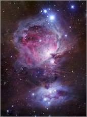 Wall sticker  The Orion Nebula - Robert Gendler