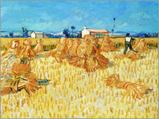 Canvas print  Harvest in Provence - Vincent van Gogh