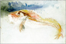 Wall sticker  A Gurnard - Joseph Mallord William Turner