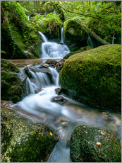Wall sticker  Little Waterfall in Black Forest - Andreas Wonisch