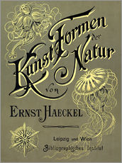 Gallery print  Art forms of nature - Ernst Haeckel