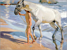 Wall sticker  Washing the Horse - Joaquin Sorolla y Bastida
