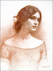Gallery print  Study for The Lady Clare - John William Waterhouse