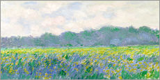 Gallery Print  Field of Yellow Irises in Giverny - Claude Monet