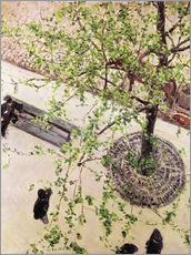 Wall sticker  Boulevard from above - Gustave Caillebotte